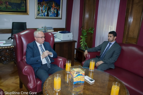 Vice President Mustafić meets with Charge d' Affaires of the UAE Embassy