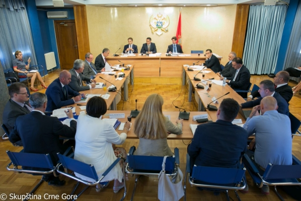 Committee on Economy, Finance and Budget holds its 151st meeting