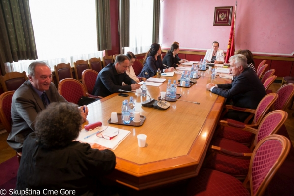 Gender Equality Committee holds its 65th meeting