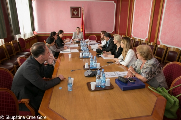 Gender Equality Committee holds its 66th meeting