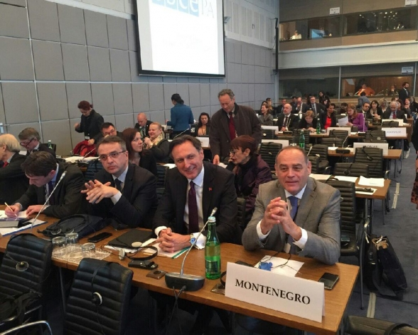 OSCE PA Winter Meeting in Vienna ends