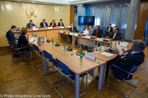 Committee on European Integration holds its 51st meeting
